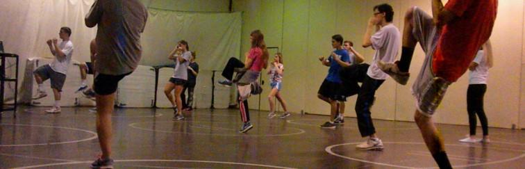 Martial Arts Fitness Workshop